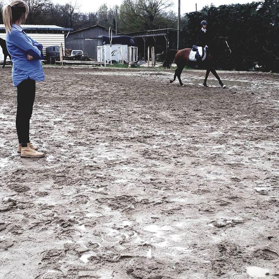 Cours d'équitation avec océane