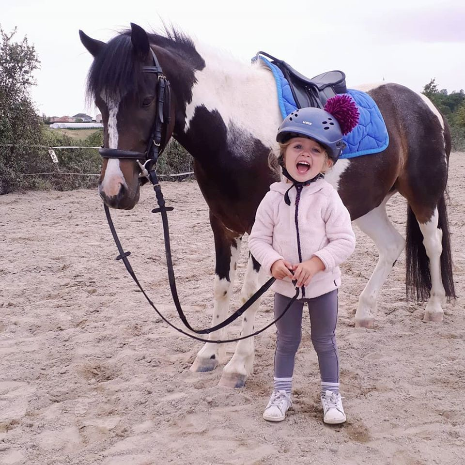 cours equitation poney