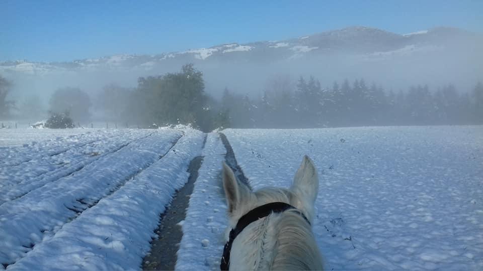 Balade à cheval sous la neige quintillière