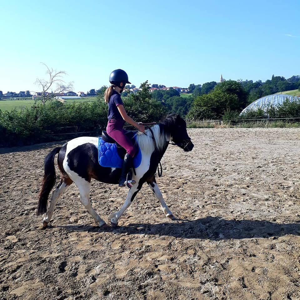 école d'équitation ouest lyonnais
